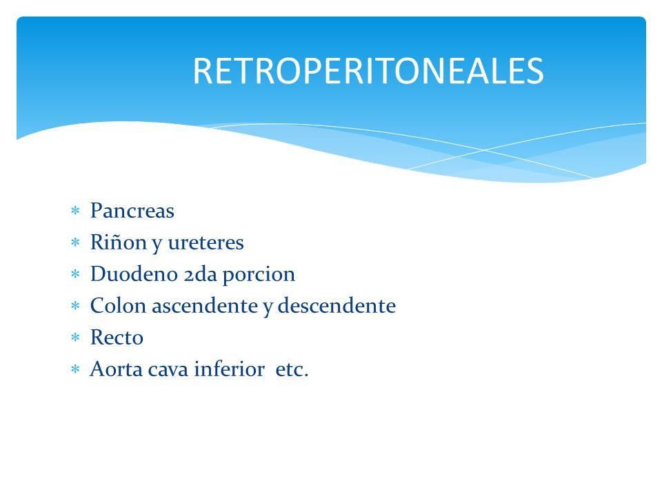 Pancreas Riñon y ureteres Duodeno 2da porcion Colon ascendente y descendente Recto Aorta cava inferior etc. RETROPERITONEALES