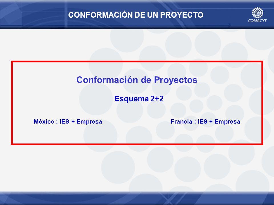 CONFORMACIÓN DE UN PROYECTO Conformación de Proyectos Esquema 2+2 México : IES + Empresa Francia : IES + Empresa