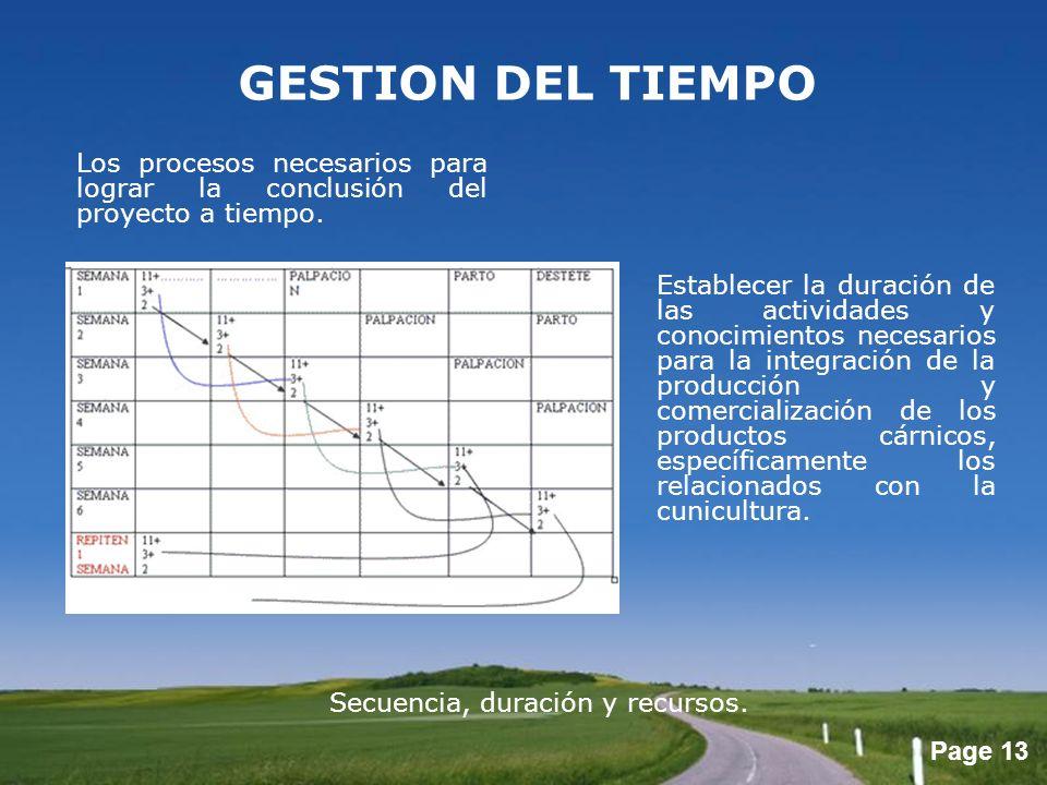 Page 13 GESTION DEL TIEMPO Los procesos necesarios para lograr la conclusión del proyecto a tiempo. Establecer la duración de las actividades y conoci