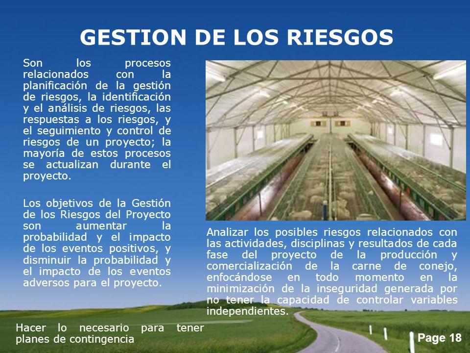 Page 18 GESTION DE LOS RIESGOS Son los procesos relacionados con la planificación de la gestión de riesgos, la identificación y el análisis de riesgos