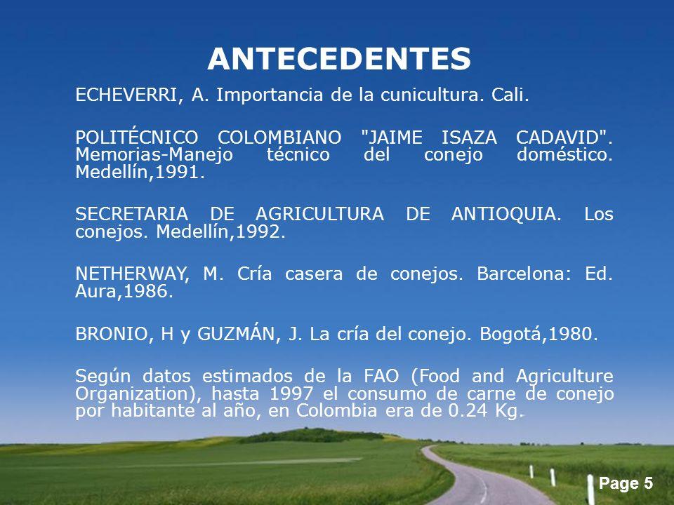 Page 5 ANTECEDENTES ECHEVERRI, A. Importancia de la cunicultura. Cali. POLITÉCNICO COLOMBIANO