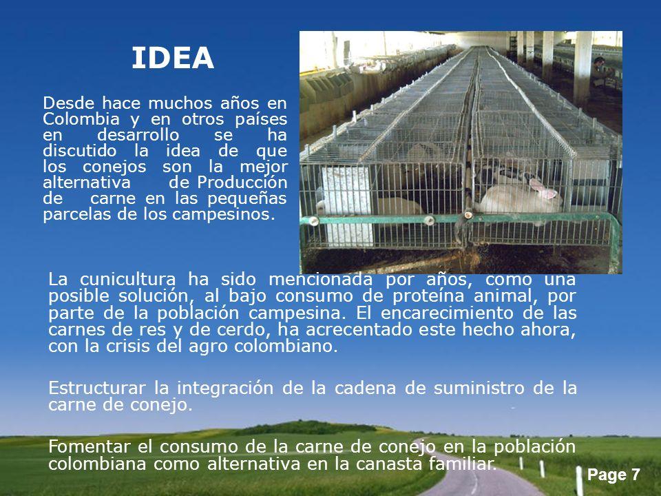 Page 7 IDEA La cunicultura ha sido mencionada por años, como una posible solución, al bajo consumo de proteína animal, por parte de la población campe