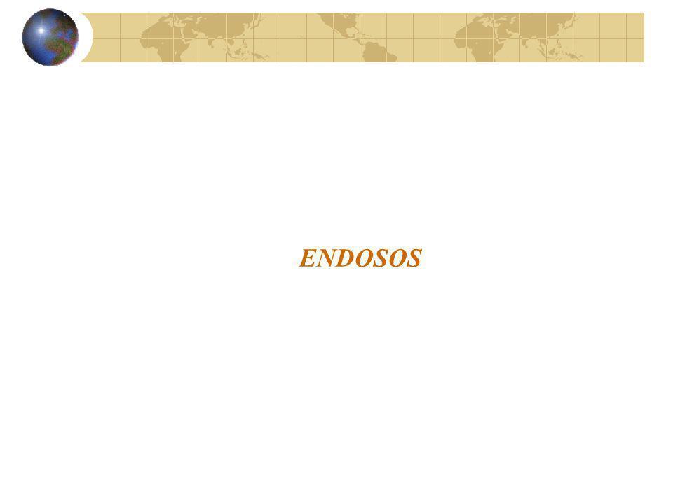 ENDOSOS