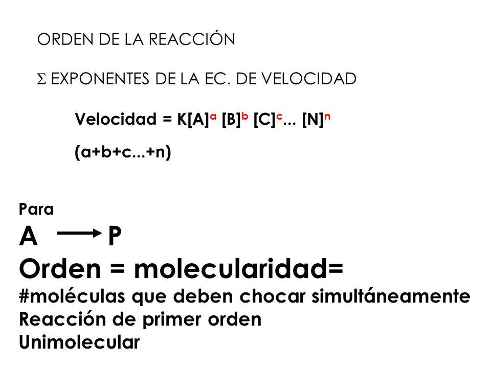 ORDEN DE LA REACCIÓN EXPONENTES DE LA EC. DE VELOCIDAD Velocidad = K[A] a [B] b [C] c... [N] n (a+b+c...+n) Para A P Orden = molecularidad= #moléculas
