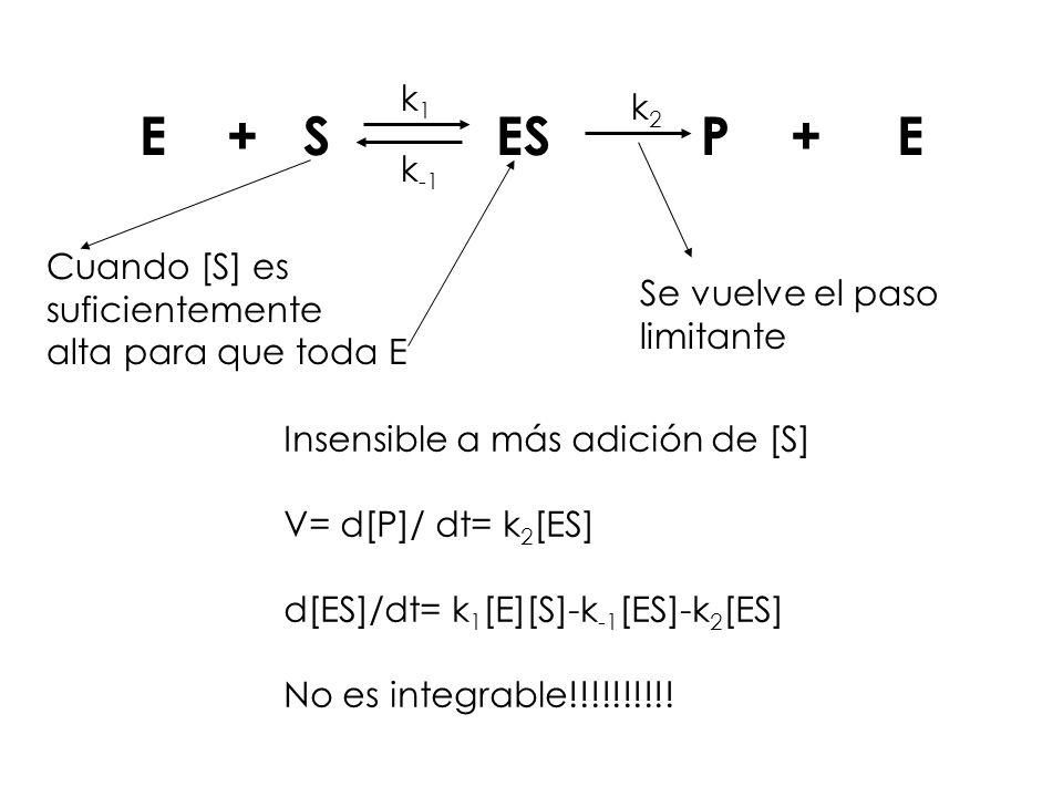 Cuando [S] es suficientemente alta para que toda E Se vuelve el paso limitante E + S ES P + E k1k1 k -1 k2k2 Insensible a más adición de [S] V= d[P]/
