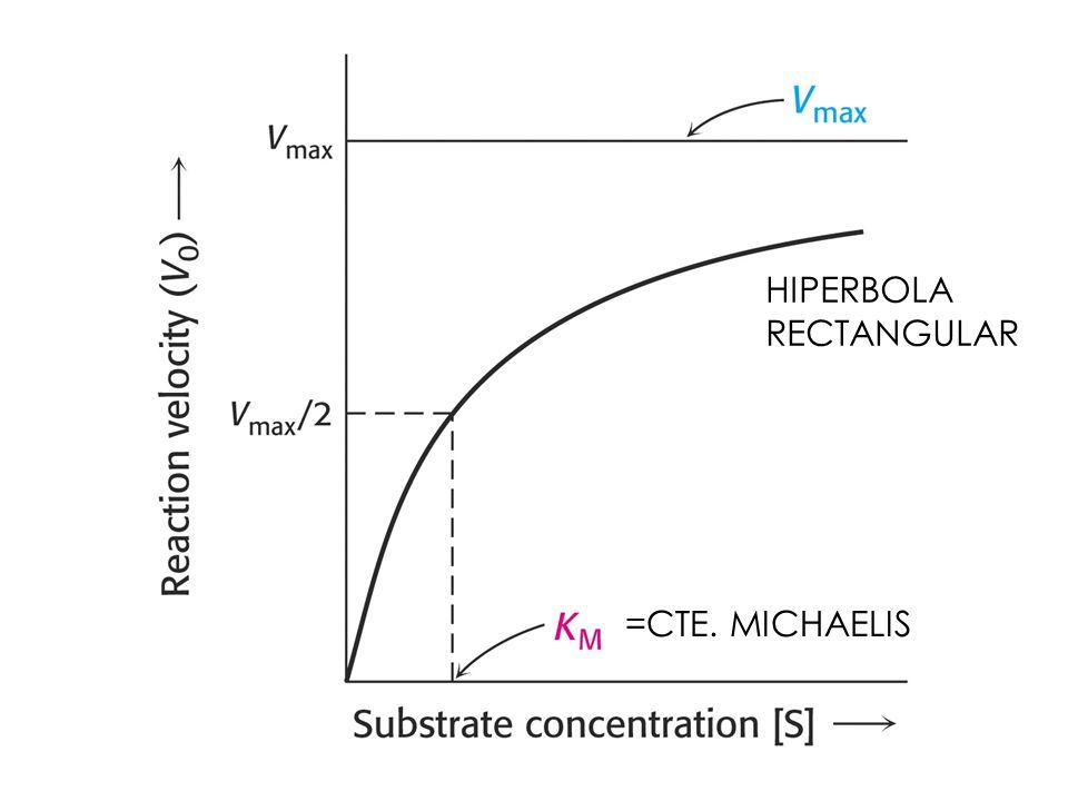 HIPERBOLA RECTANGULAR =CTE. MICHAELIS