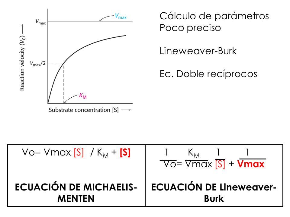 Cálculo de parámetros Poco preciso Lineweaver-Burk Ec. Doble recíprocos Vo= Vmax [S] / K M + [S] ECUACIÓN DE MICHAELIS- MENTEN 1 K M 1 1 Vo= Vmax [S]