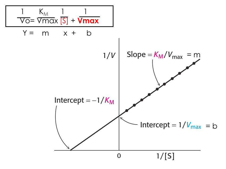 1 K M 1 1 Vo= Vmax [S] + Vmax Y = m x + b = b = m