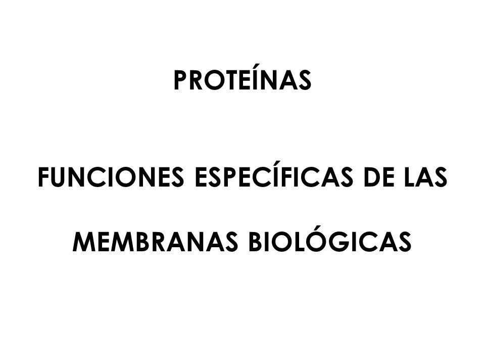 PROTEÍNAS FUNCIONES ESPECÍFICAS DE LAS MEMBRANAS BIOLÓGICAS
