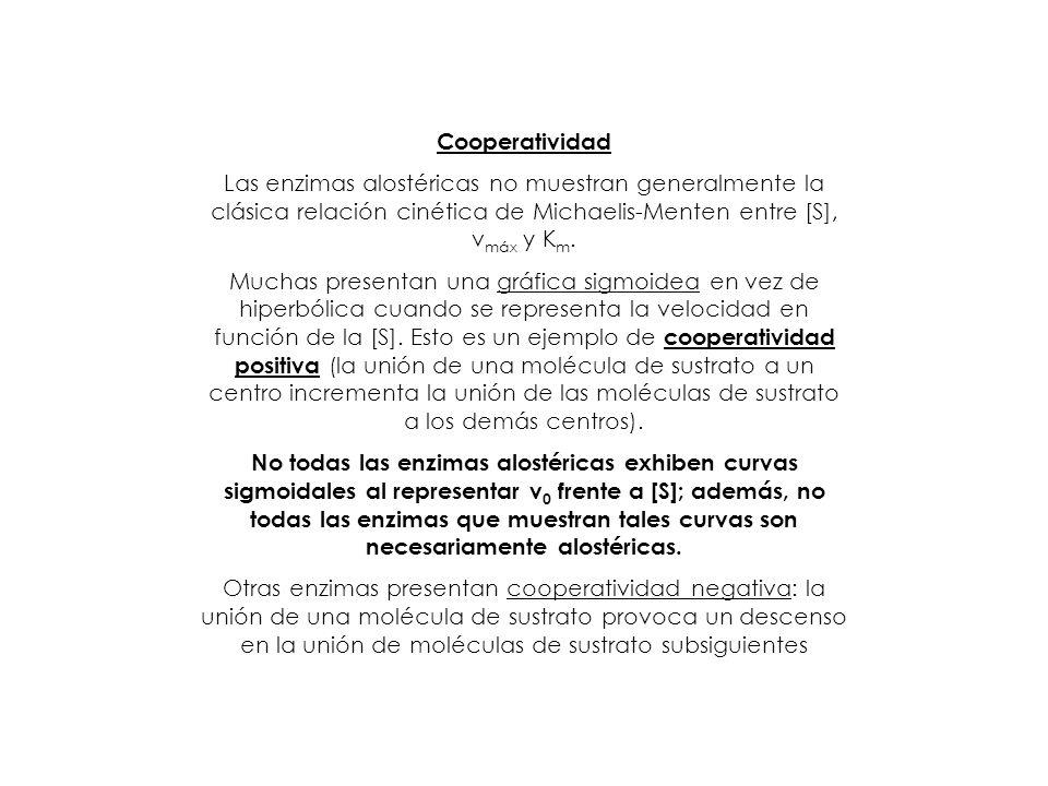Cooperatividad Las enzimas alostéricas no muestran generalmente la clásica relación cinética de Michaelis-Menten entre [S], v máx y K m. Muchas presen