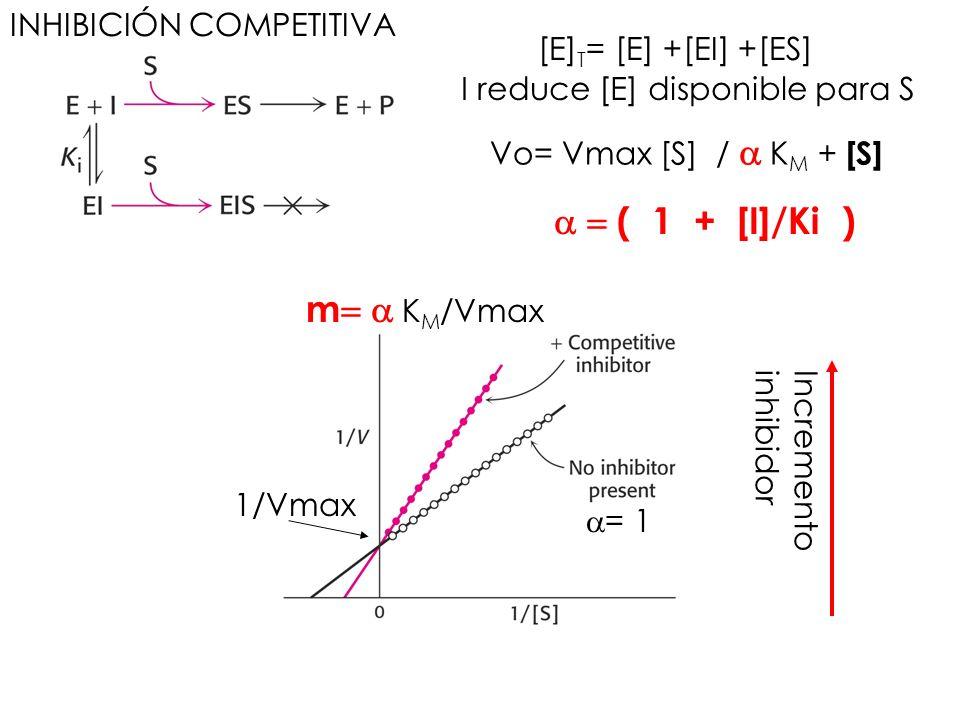 INHIBICIÓN COMPETITIVA [E] T = [E] +[EI] +[ES] Vo= Vmax [S] / K M + [S] ( 1 + [I]/Ki ) Incremento inhibidor 1/Vmax m K M /Vmax = 1 I reduce [E] dispon