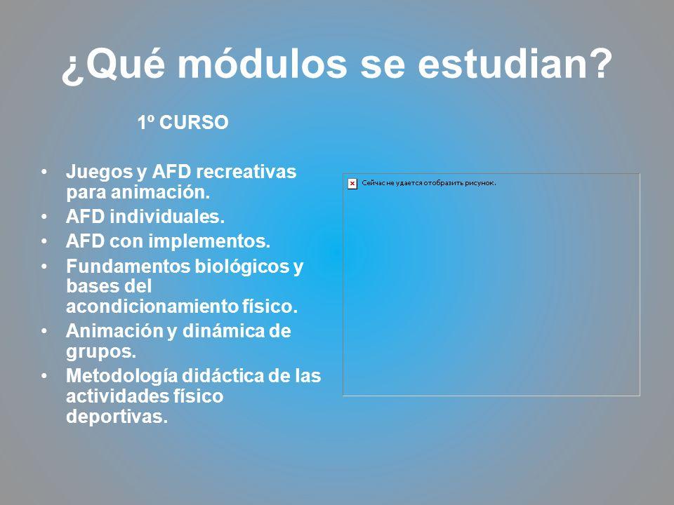 ¿Qué módulos se estudian? 1º CURSO Juegos y AFD recreativas para animación. AFD individuales. AFD con implementos. Fundamentos biológicos y bases del