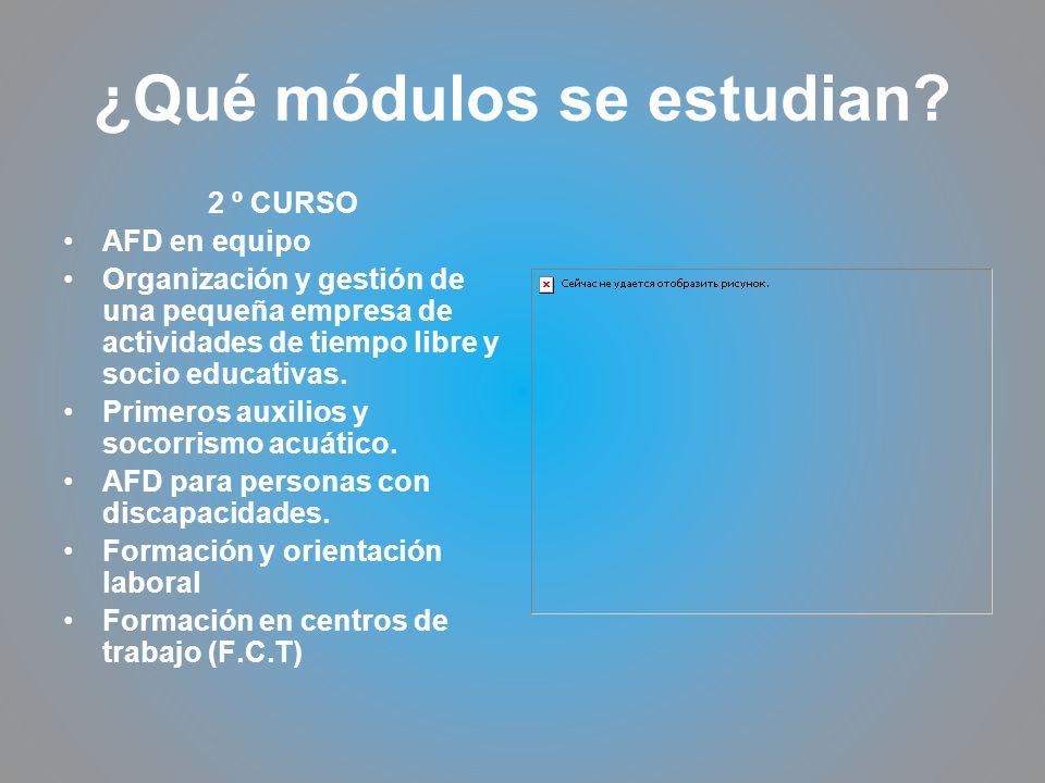 ¿Qué módulos se estudian? 2 º CURSO AFD en equipo Organización y gestión de una pequeña empresa de actividades de tiempo libre y socio educativas. Pri