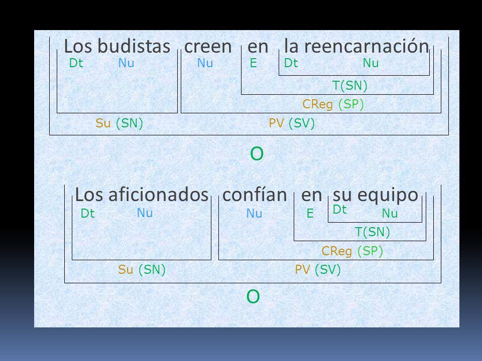 Los budistas creen en la reencarnación Los aficionados confían en su equipo O Su (SN)PV (SV) Nu CReg (SP) NuDtNu O Su (SN) CReg (SP) Nu PV (SV) Nu E T