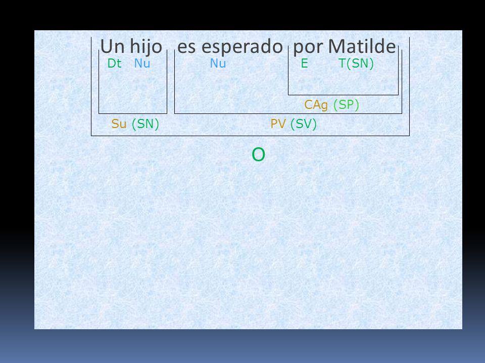 Un hijo es esperado por Matilde O Su (SN)PV (SV) Nu CAg (SP) T(SN)ENuDt