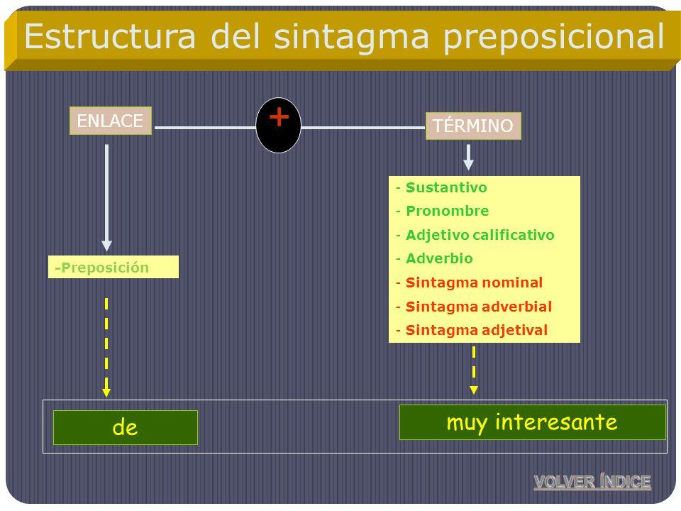 ENLACE -Preposición - Sustantivo - Pronombre - Adjetivo calificativo - Adverbio - Sintagma nominal - Sintagma adverbial - Sintagma adjetival + Antonio