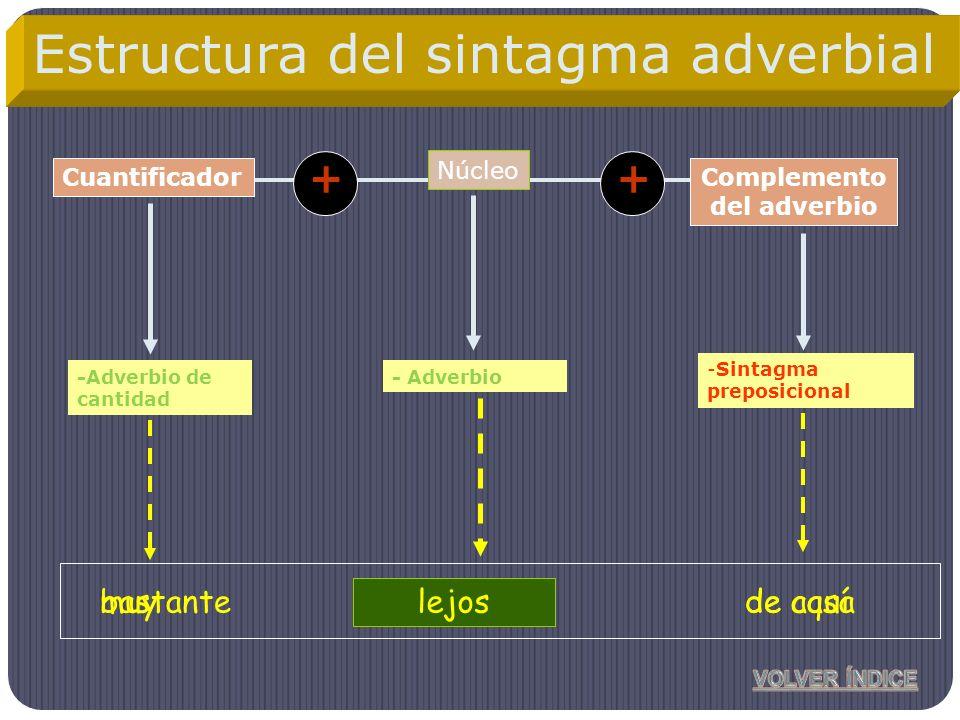 Núcleo Complemento del adverbio -Adverbio de cantidad -Sintagma preposicional Cuantificador ++ cercamuyde casa Estructura del sintagma adverbial - Adv