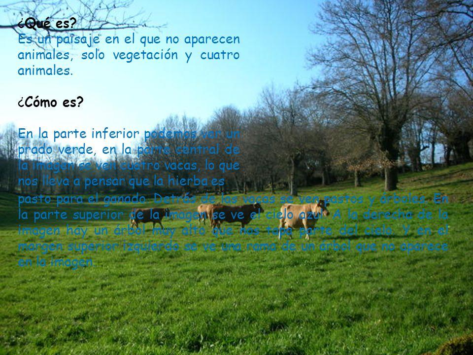 ¿Qué es? Es un paisaje en el que no aparecen animales, solo vegetación y cuatro animales. ¿Cómo es? En la parte inferior podemos ver un prado verde, e