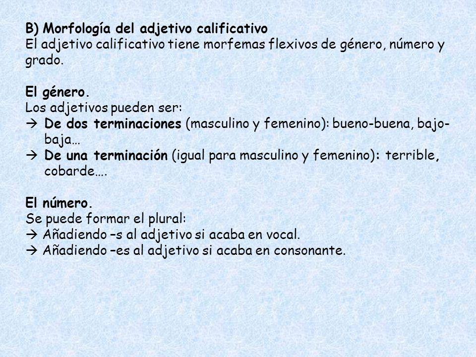 B) Morfología del adjetivo calificativo El adjetivo calificativo tiene morfemas flexivos de género, número y grado. El género. Los adjetivos pueden se