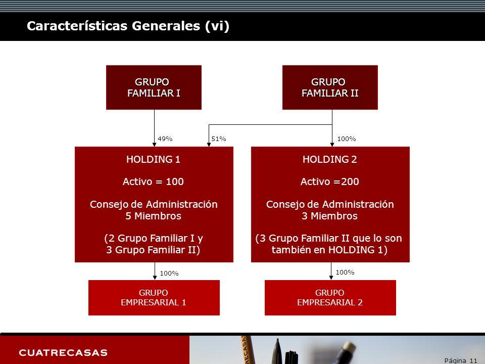 Página 11 Características Generales (vi) GRUPO FAMILIAR I GRUPO FAMILIAR II HOLDING 1 Activo = 100 Consejo de Administración 5 Miembros (2 Grupo Famil