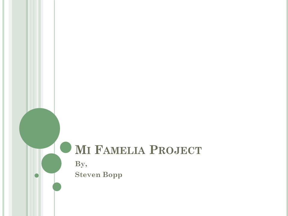 M I F AMELIA P ROJECT By, Steven Bopp