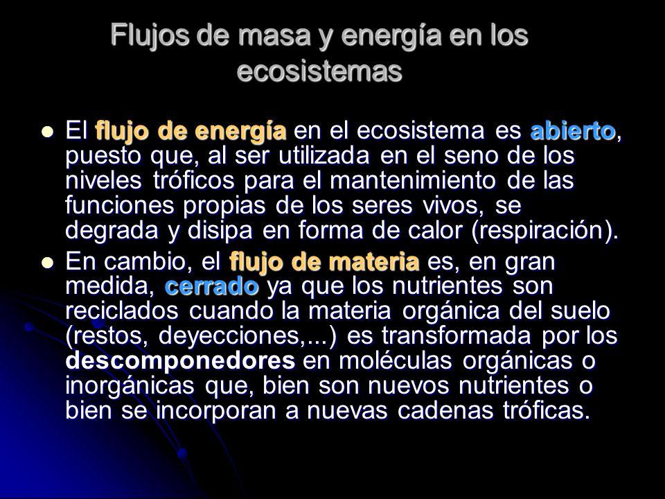 Flujos de masa y energía en los ecosistemas El flujo de energía en el ecosistema es abierto, puesto que, al ser utilizada en el seno de los niveles tr