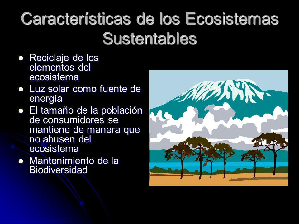 Características de los Ecosistemas Sustentables Reciclaje de los elementos del ecosistema Reciclaje de los elementos del ecosistema Luz solar como fue