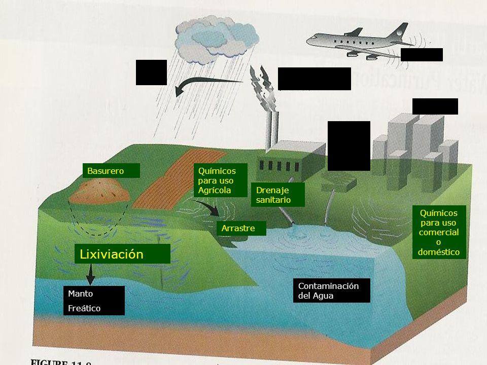 Lluvia Acida Contaminación del Aire Planta de Tratami ento de agua Ciudad Aviación Químicos para uso Agrícola Drenaje sanitario Químicos para uso come