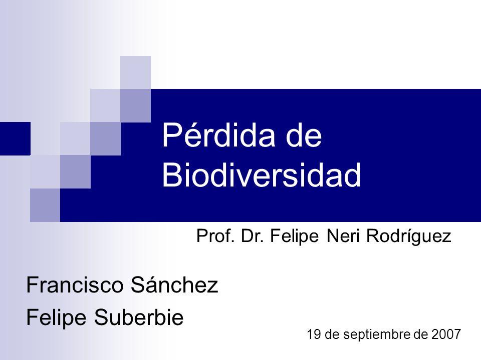 Pérdida de Biodiversidad Francisco Sánchez Felipe Suberbie 19 de septiembre de 2007 Prof. Dr. Felipe Neri Rodríguez