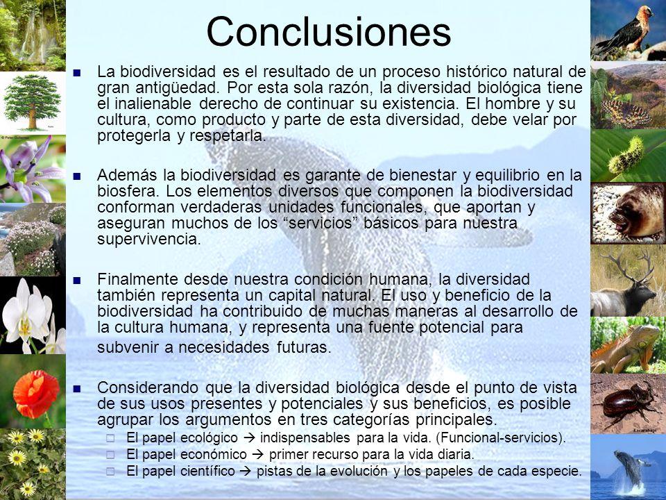 Conclusiones La biodiversidad es el resultado de un proceso histórico natural de gran antigüedad. Por esta sola razón, la diversidad biológica tiene e