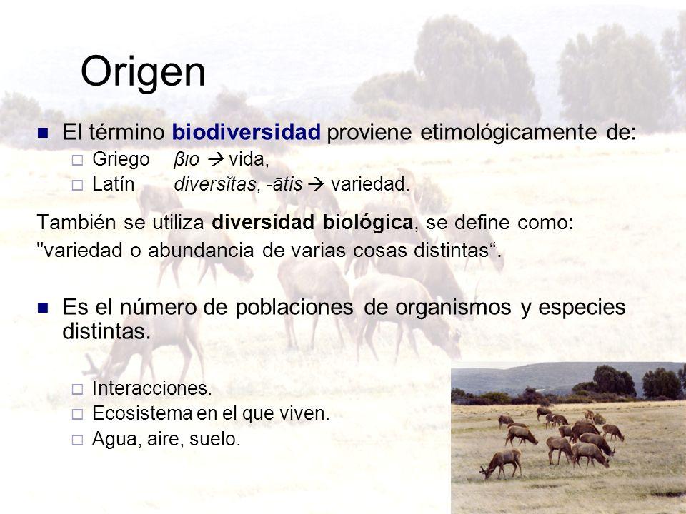 Origen El término biodiversidad proviene etimológicamente de: Griego βιο vida, Latín diversĭtas, -ātis variedad. También se utiliza diversidad biológi