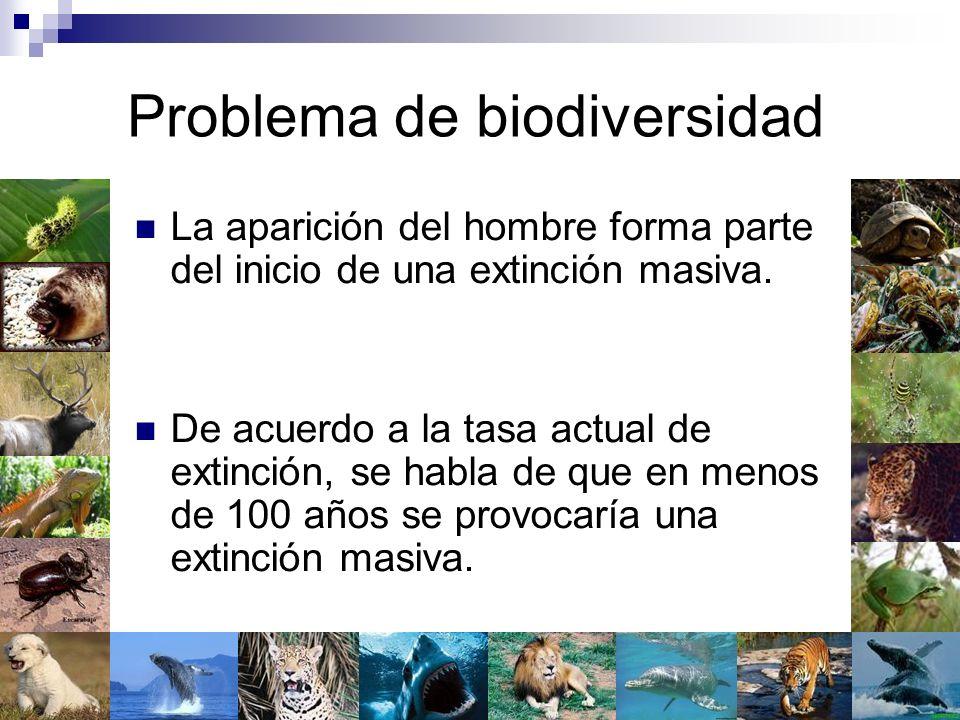 Problema de biodiversidad La aparición del hombre forma parte del inicio de una extinción masiva. De acuerdo a la tasa actual de extinción, se habla d