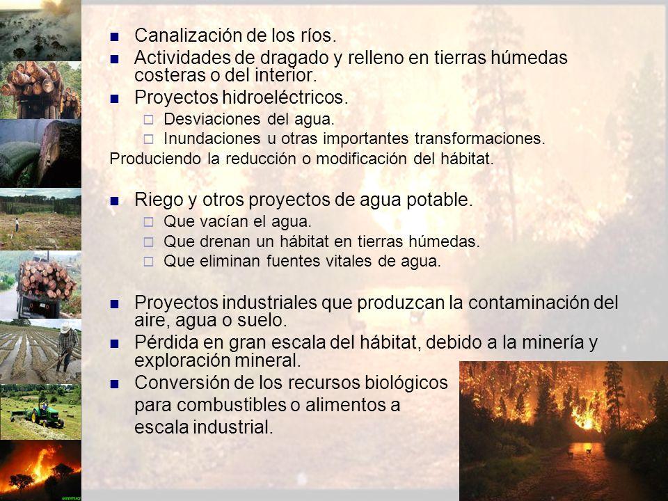 Canalización de los ríos. Actividades de dragado y relleno en tierras húmedas costeras o del interior. Proyectos hidroeléctricos. Desviaciones del agu