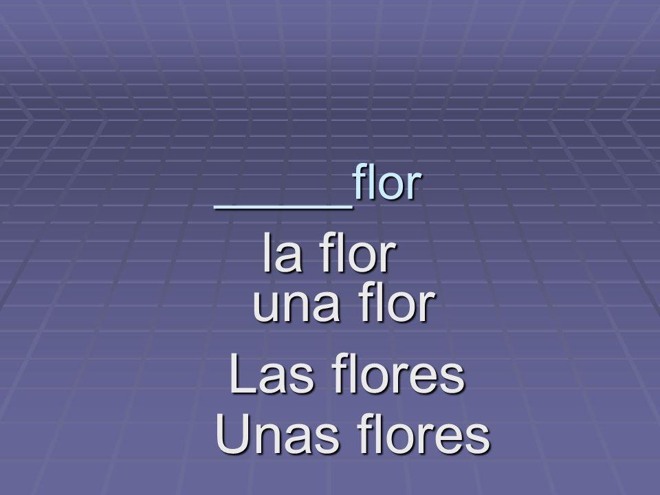 _____flor la flor la flor una flor una flor Las flores Unas flores