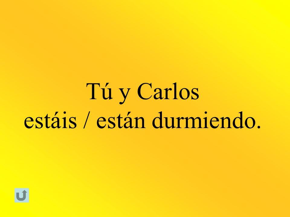 Tú y Carlos estáis / están durmiendo.