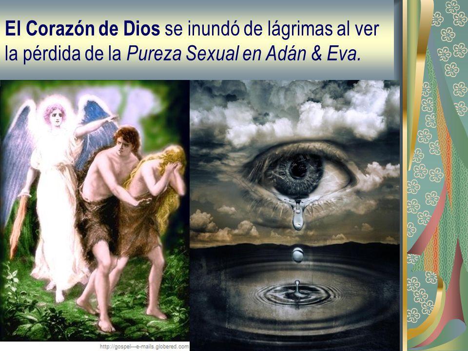 El Corazón de Dios se inundó de lágrimas al ver la pérdida de la P ureza Sexual en Adán & Eva.