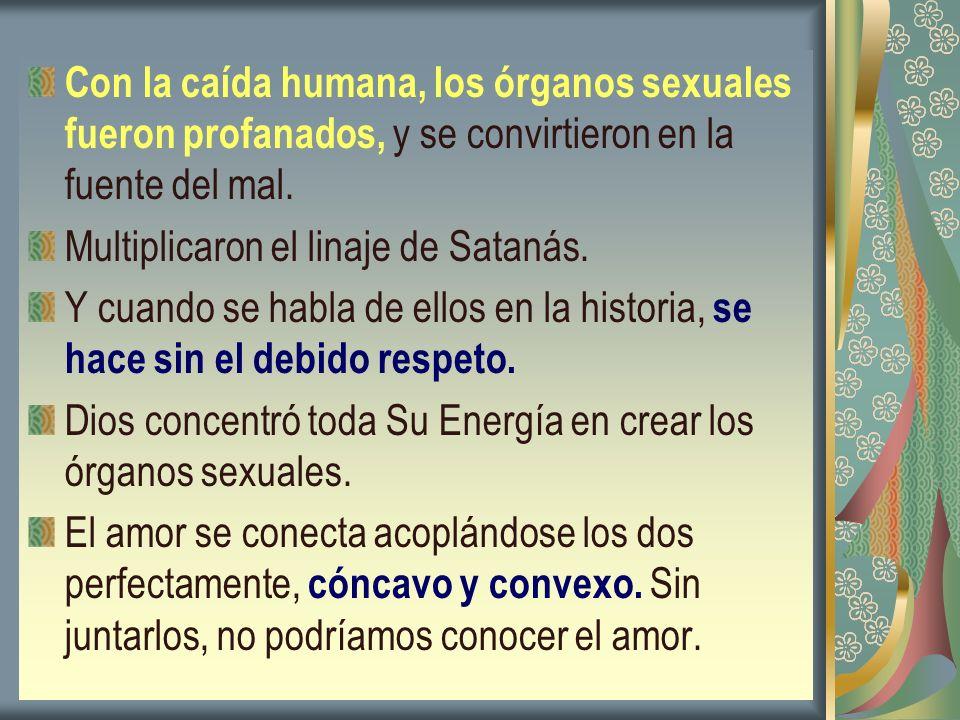 Con la caída humana, los órganos sexuales fueron profanados, y se convirtieron en la fuente del mal. Multiplicaron el linaje de Satanás. Y cuando se h