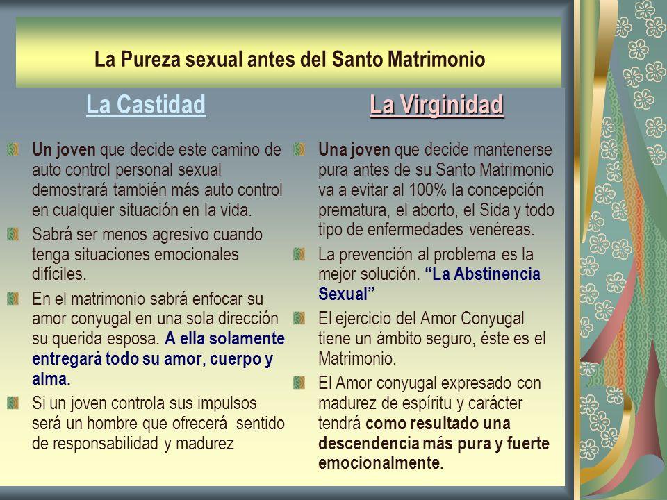 La Pureza sexual antes del Santo Matrimonio La Castidad Un joven que decide este camino de auto control personal sexual demostrará también más auto co