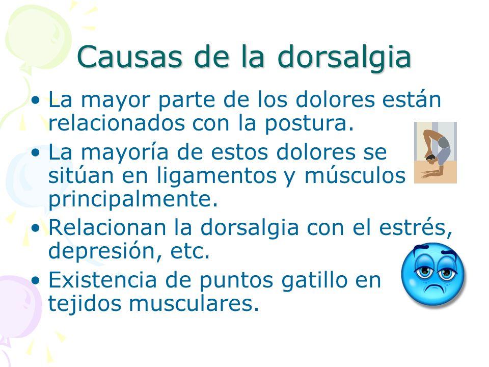 Causas de la dorsalgia La mayor parte de los dolores están relacionados con la postura. La mayoría de estos dolores se sitúan en ligamentos y músculos