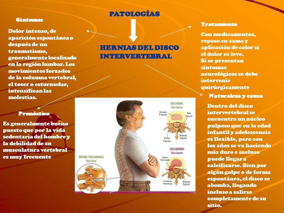 PATOLOGÍAS HERNIAS DEL DISCO INTERVERTEBRAL Síntomas Dolor intenso, de aparición espontánea o después de un traumatismo, generalmente localizado en la