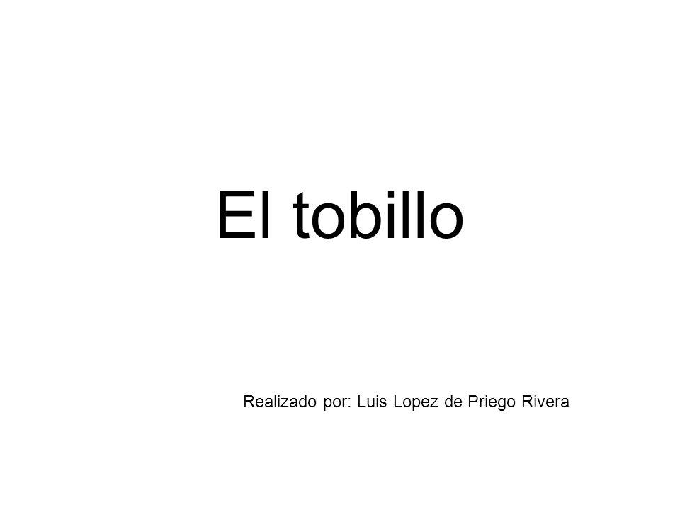 El tobillo Realizado por: Luis Lopez de Priego Rivera