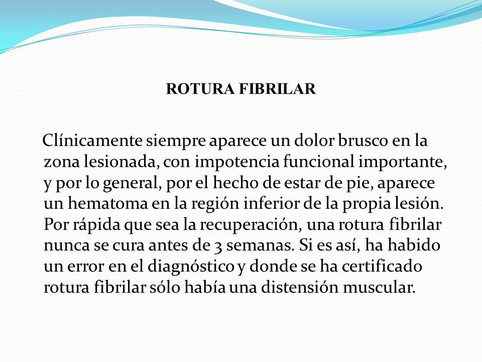 ROTURA FIBRILAR Clínicamente siempre aparece un dolor brusco en la zona lesionada, con impotencia funcional importante, y por lo general, por el hecho