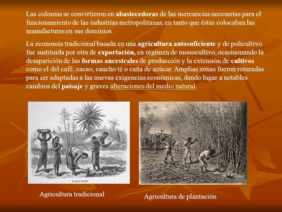 Las colonias se convirtieron en abastecedoras de las mercancias necesarias para el funcionamiento de las industrias metropolitanas, en tanto que éstas