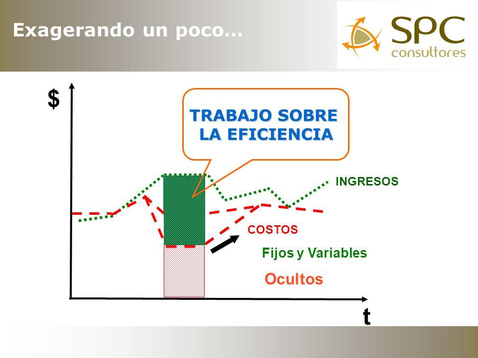 www.spcconsultores.com.ar 54-11-4704-9945 Ing.P.A.