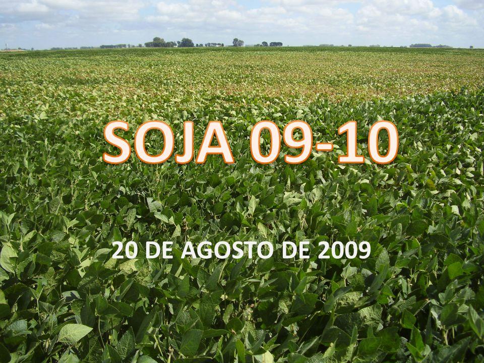 20 DE AGOSTO DE 2009