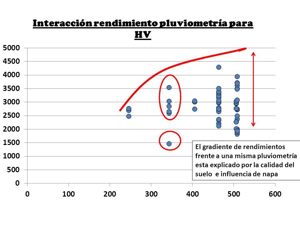 El gradiente de rendimientos frente a una misma pluviometría esta explicado por la calidad del suelo e influencia de napa