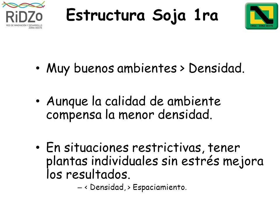 Estructura Soja 1ra Muy buenos ambientes > Densidad. Aunque la calidad de ambiente compensa la menor densidad. En situaciones restrictivas, tener plan
