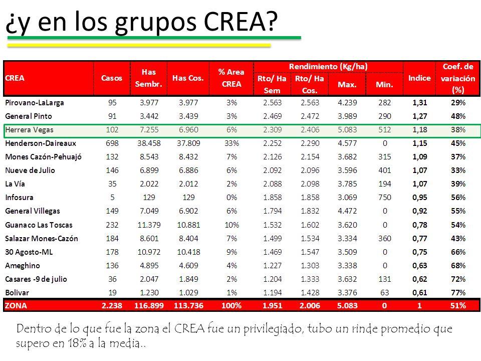 ¿y en los grupos CREA? Dentro de lo que fue la zona el CREA fue un privilegiado, tubo un rinde promedio que supero en 18% a la media..
