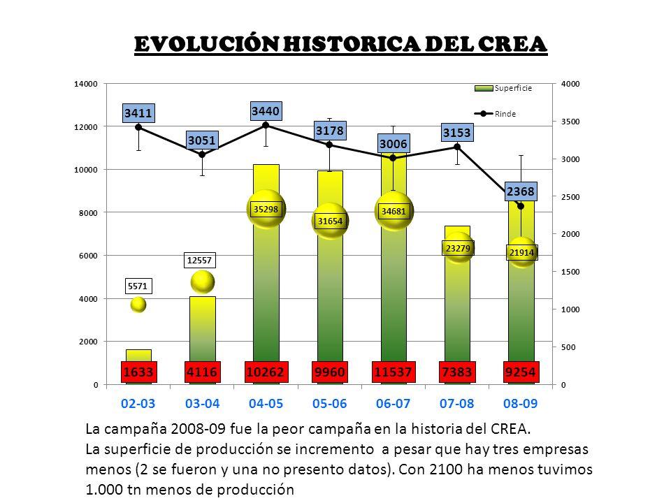 EVOLUCIÓN HISTORICA DEL CREA La campaña 2008-09 fue la peor campaña en la historia del CREA. La superficie de producción se incremento a pesar que hay