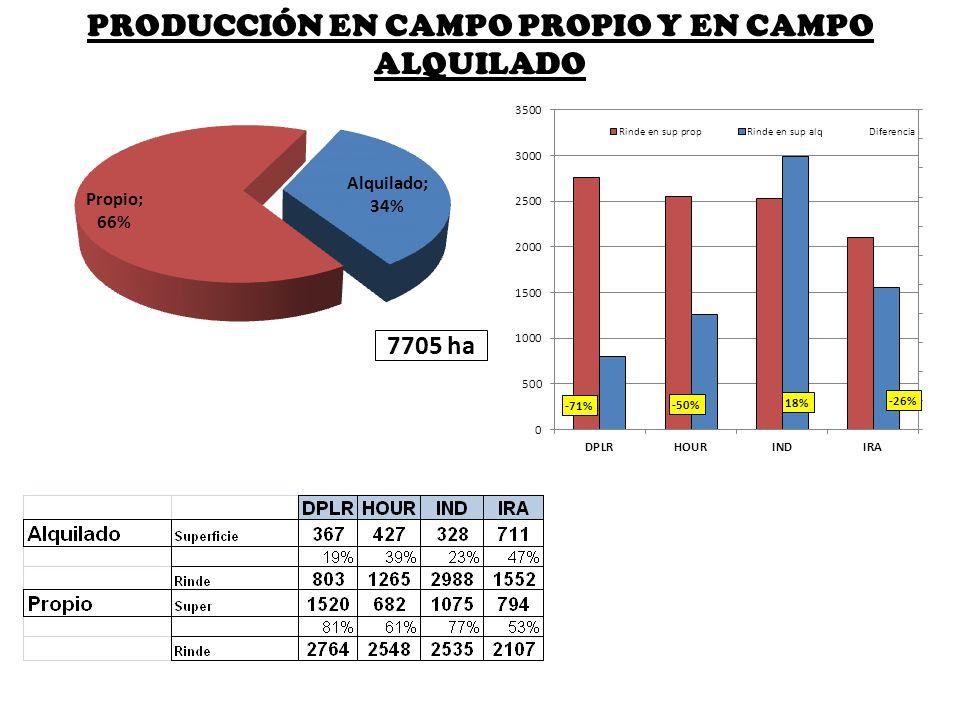 PRODUCCIÓN EN CAMPO PROPIO Y EN CAMPO ALQUILADO